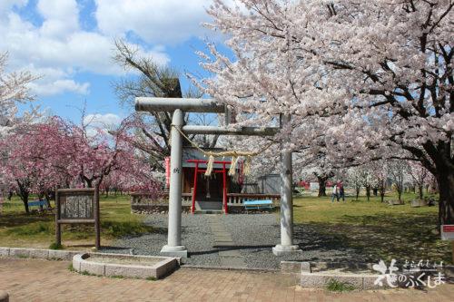 福島県福島市飯坂 乙和神社 2020年4月9日