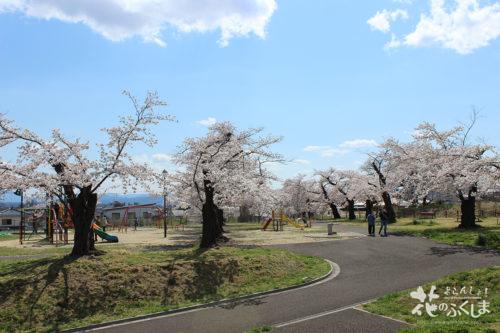 福島県福島市飯坂 乙和公園 2020年4月9日 写真2