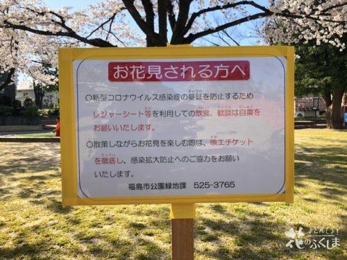 福島県福島市 新浜公園の桜 2020年4月3日 IMG_8954