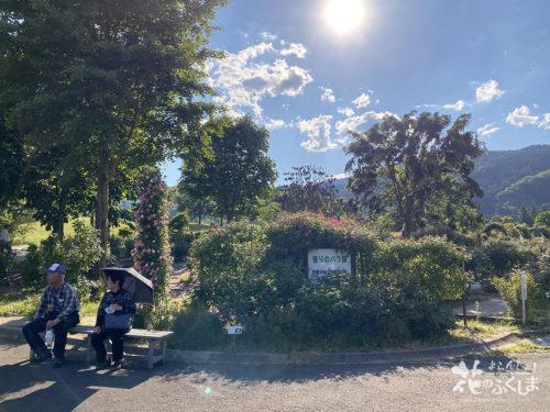 福島県福島市あづま総合運動公園香りのバラ園_2020年5月30日_画像5_6012