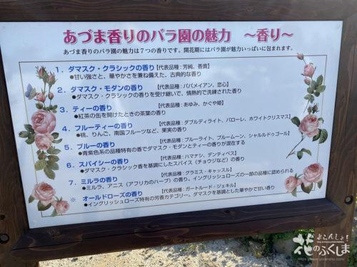 福島県福島市あづま総合運動公園香りのバラ園_2020年5月30日_画像8_6004