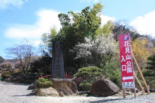 福島県福島市 花見山公園 2018年3月23日 IMG_0199