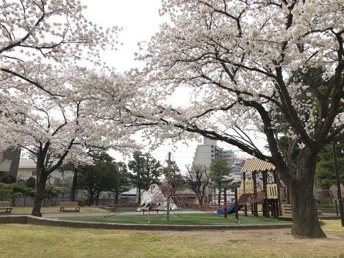 福島県福島市 新浜公園 2018年4月2日