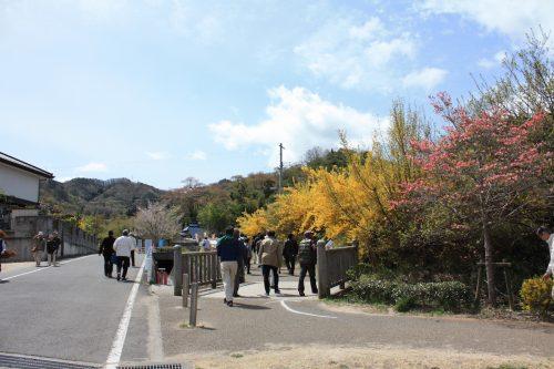 福島県福島市 花見山公園 2018年4月16日 IIMG_0696