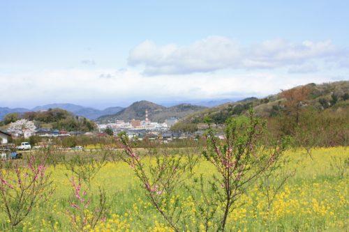 福島県福島市 花見山公園 2018年4月16日 IMG_0697
