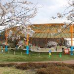 福島県福島市 十六沼公園 2018年4月5日 IMG_7959