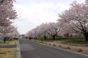 福島県福島市 乙和公園 IMG_7967