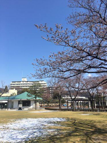 福島県福島市 新浜公園 2019年4月3日 IMG_3629