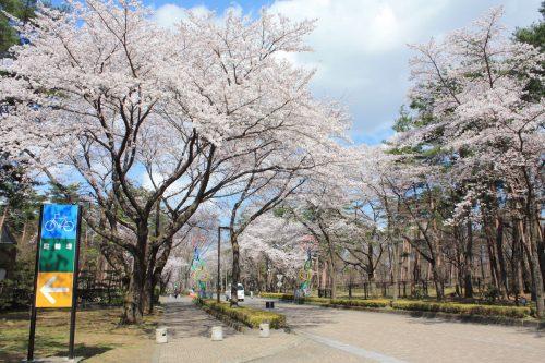 福島県福島市 あづま総合運動公園 2019年4月15日 IMG_5720
