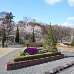 福島県福島市 四季の里 2019年4月15日 IMG_5736