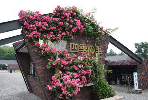 福島県福島市 四季の里 2019年6月7日 よらんしょ!花のふくしま_6021